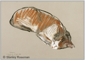 "Drawing by Stanley Roseman, ""Sleeping Cat,"" 1988, chalks on paper, Teylers Museum,The Netherlands. © Stanley Roseman."